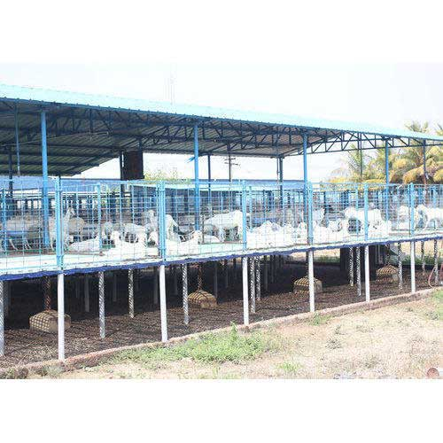 Elevated floor for goat farming