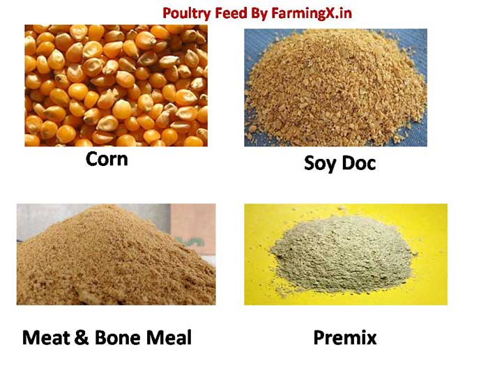 feed ingredients used in the poultry feed for the better performance