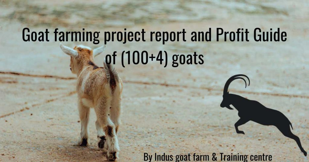 goat farming project report free download