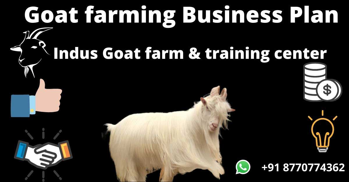 goat farming business plan 2020 complete guide