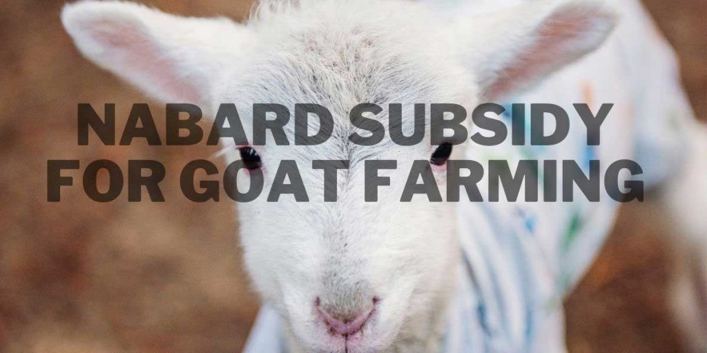 Nabard sunsidy for goat farming, leaen the easy proces