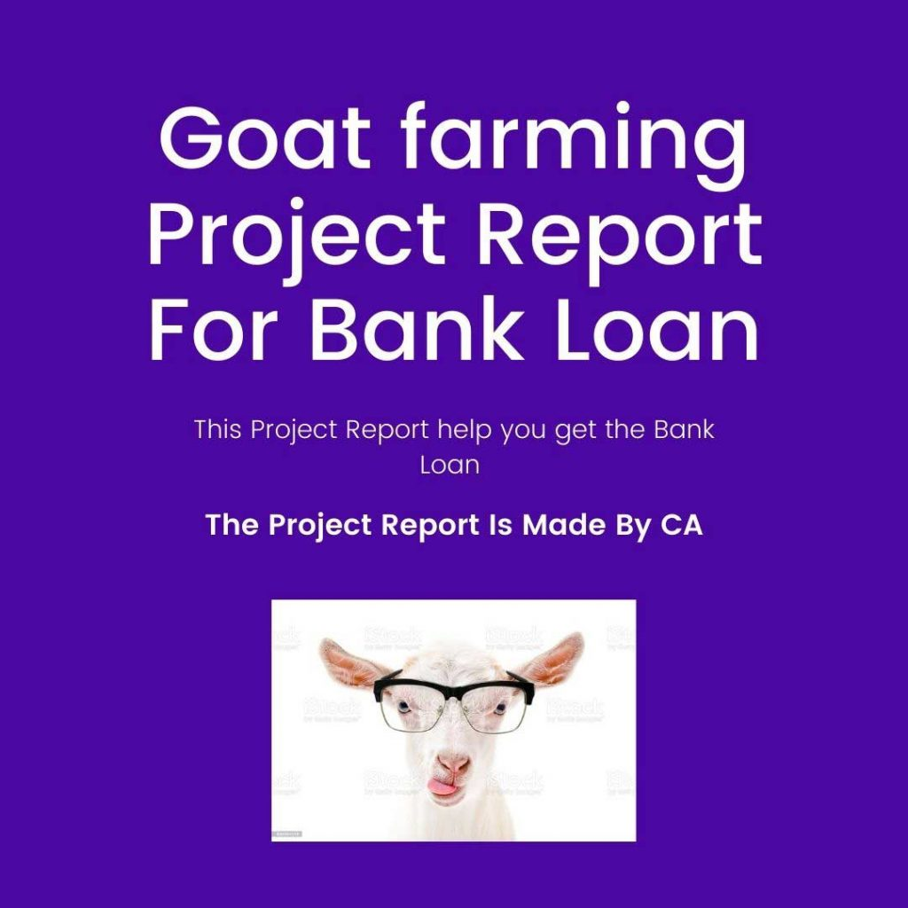 A Goat farming project report for bank loan
